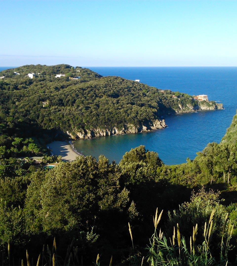 island-ischia